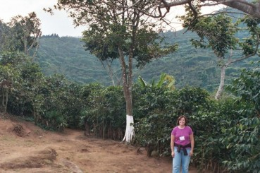 El-Salvador-Coffee-Farm-Coffee-Trees-2