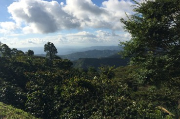 Honduras-Siguatepeque-Coffee-Growing-Hills-2