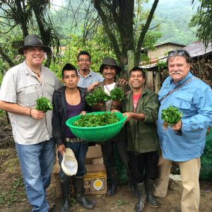 Specialty Coffee Importer Andrew Vournas with Dave Day of Growers First hand out young coffee saplings to coffee farmers in Ixtepec, Oaxaca Mexico
