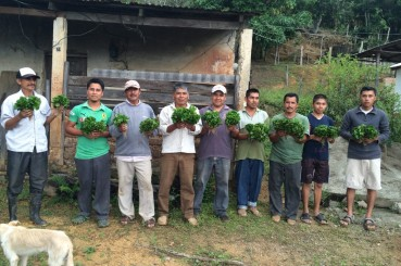 Coffee Farmers in Oaxaca, Mexico with Coffee Saplings