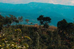 Blue Hills at Dusk Behind a Coffee Farm and SUV in Tarrazu, Costa Rica