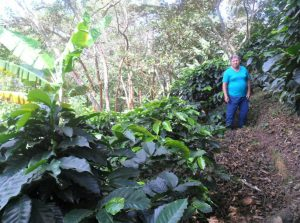 Colombian Sustainable Coffee Farmer Lillia Teresa at Her Farm Finca El Placer
