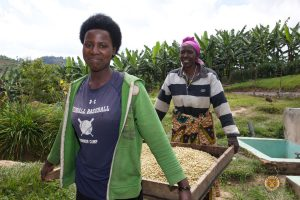 Female Coffee Farmers of the Misozi Hingakawa Women's Coffee Cooperative, Rwanda