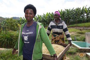 Female Coffee Farmers of the Misozi Hingakawa Women's Coffee Cooperative, Rwanda