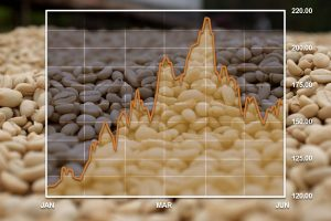 Coffee Market Growth Chart Graphic