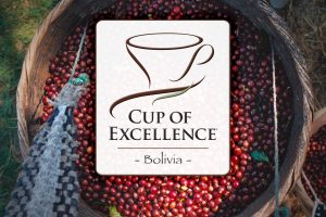 Cup of Excellence Bolivia