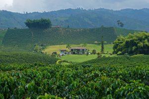 Colombia Hacienda El Jardin Estate
